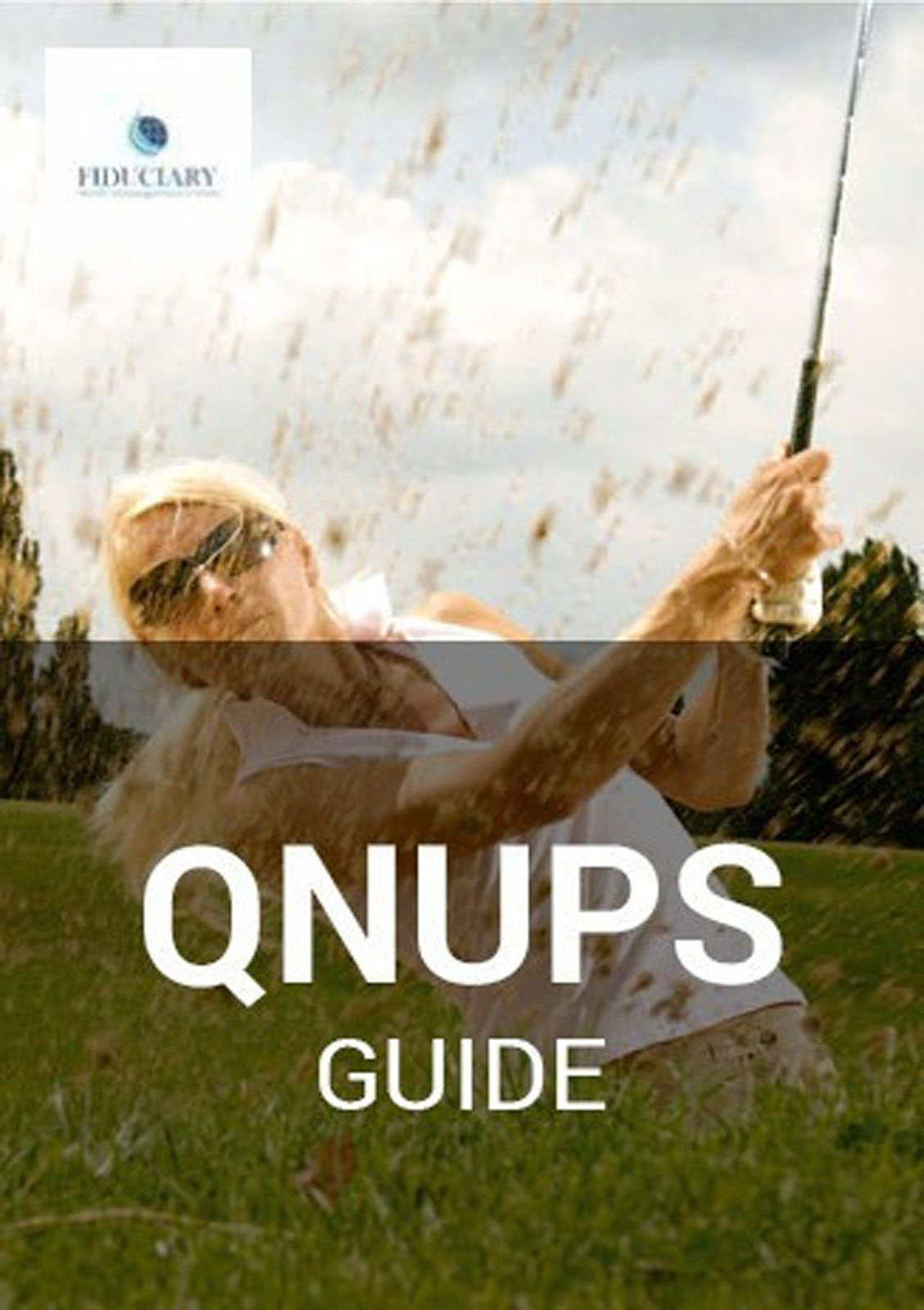 QNUPS Guide Image